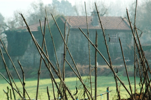 Quinta das Lombas ou Quinta de Fataunços